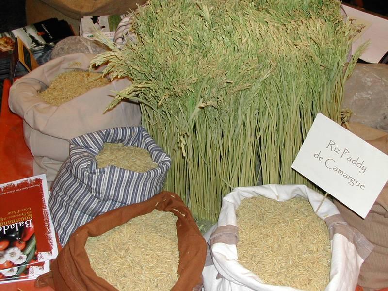 273-producteur-produit-bio-vaucluse-developpement-durable