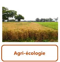 agri-écologie1